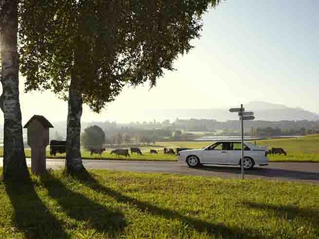 Bei den Urlaubsregionen haben deutsche Ziele die Nase vorn. Am beliebtesten ist mit fast 5 Prozent die Region Südliches Oberbayern mit dem Allgäu. Foto: ADAC/Dirk Bruniecki